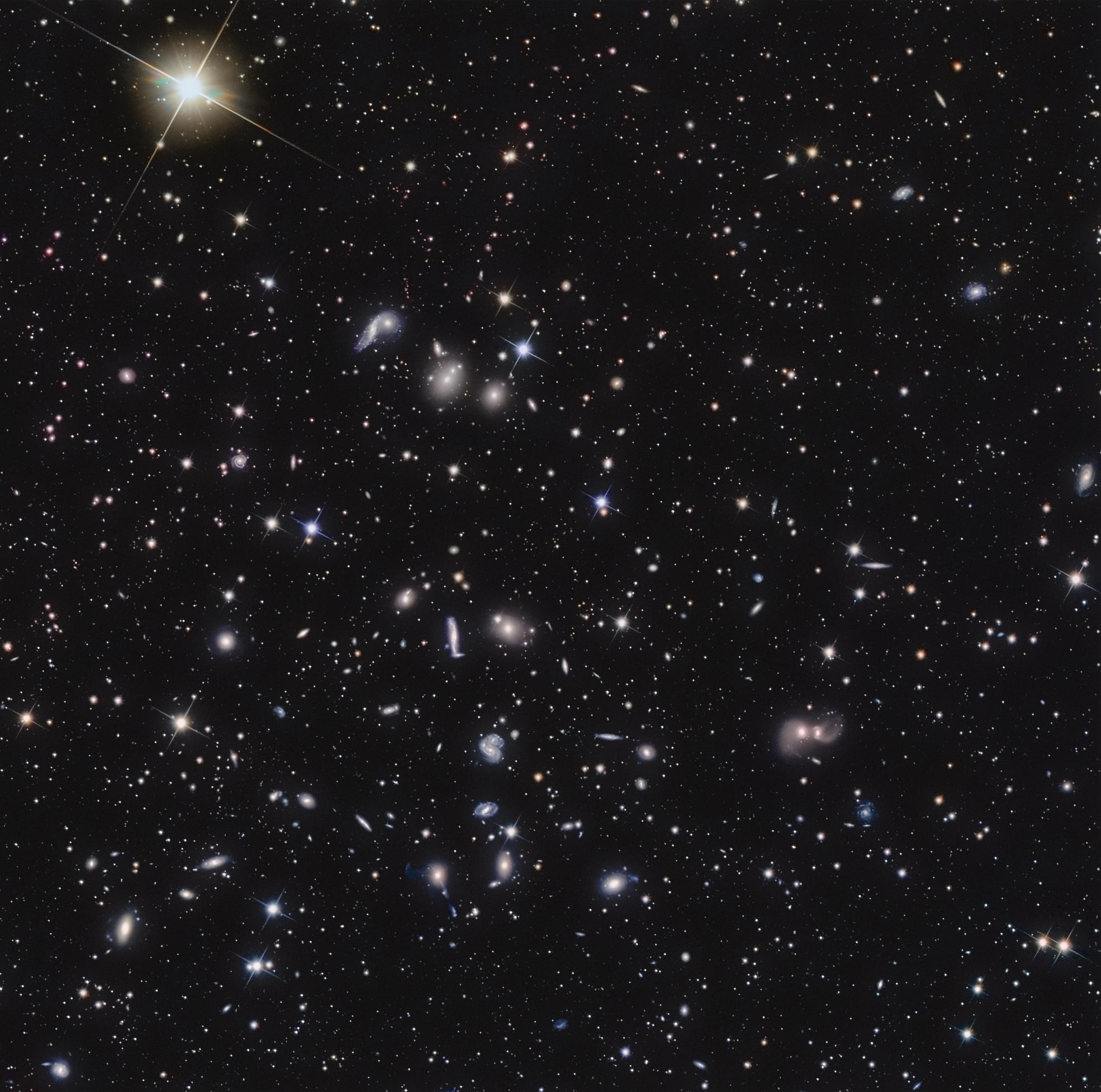 Hercules Galaxy Cluster