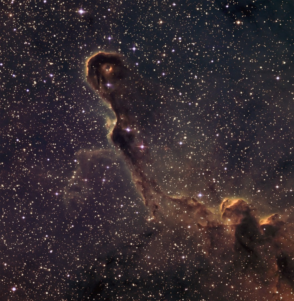 Elephant's Trunk, vdB142 in Narrowband