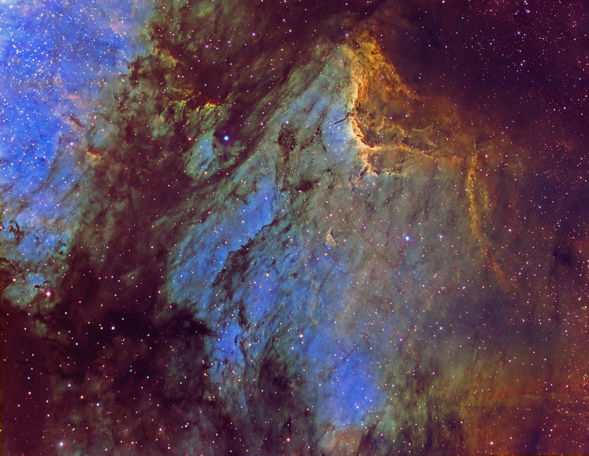 Narrowband Pelican