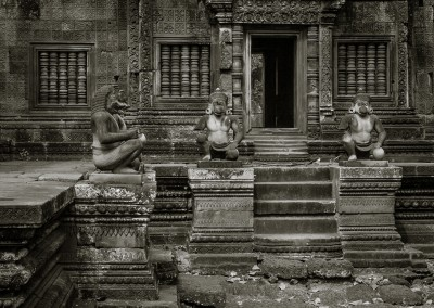 Banteay Srey Monkeys, Cambodia