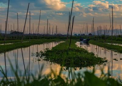 Tomato Farm Inle Lake, Myanmar