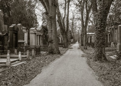 Central Cemetary 4, Vienna