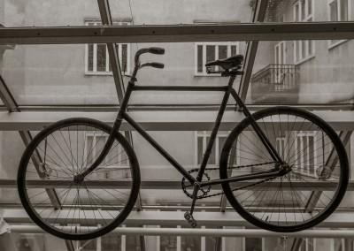 Theodore Herzl Bicycle, Vienna