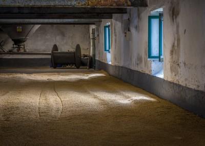 Drying Barley 2 at LaPhroaig, Islay