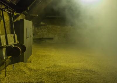 LaPhroaig Peat Smoking of Barley
