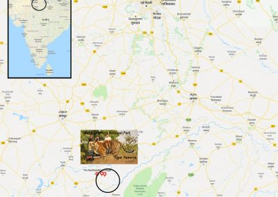 Ranthambore National Park and Tiger Reserve