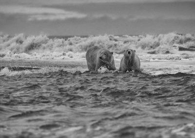 Rough Beaufort Sea 2
