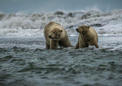 Rough Beaufort Sea