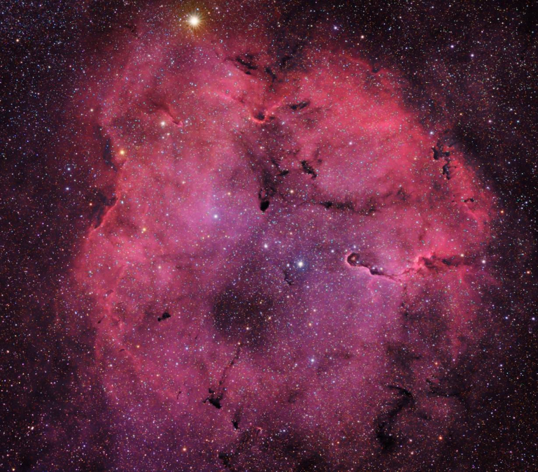 IC1396 HaRB