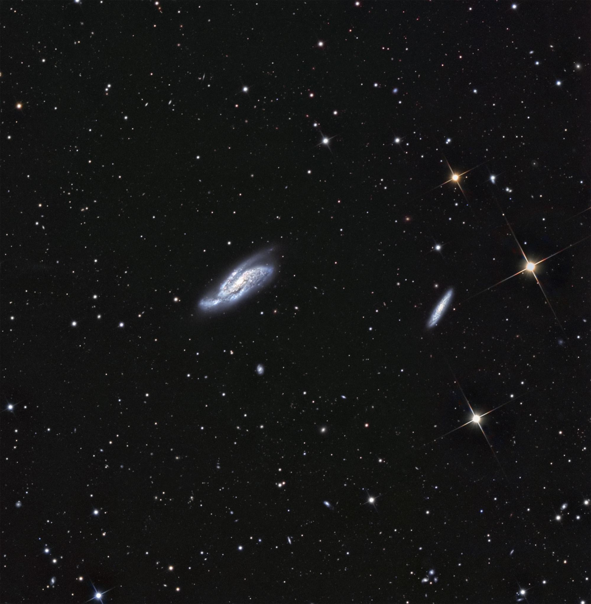NGC 4088 in UMa