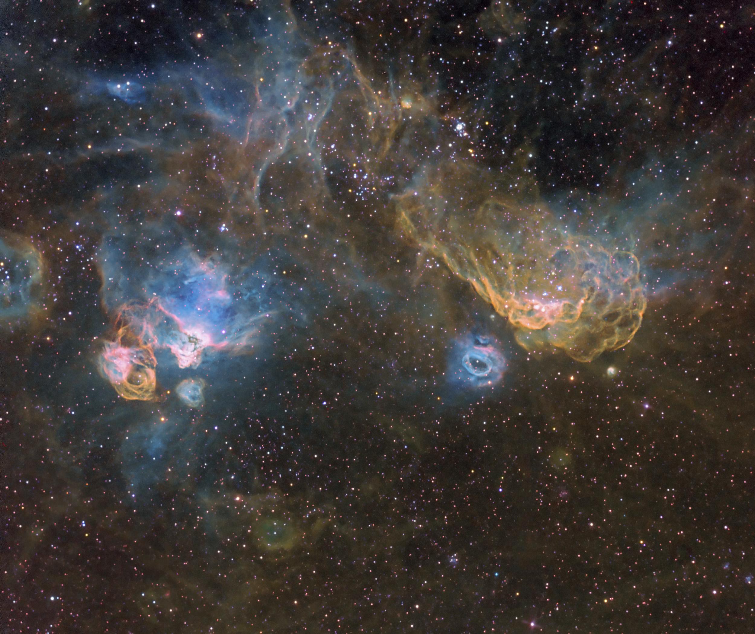 Southern Seagull Nebula