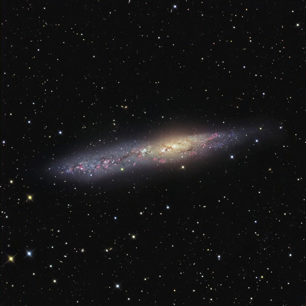 NGC 55 in Sculptor