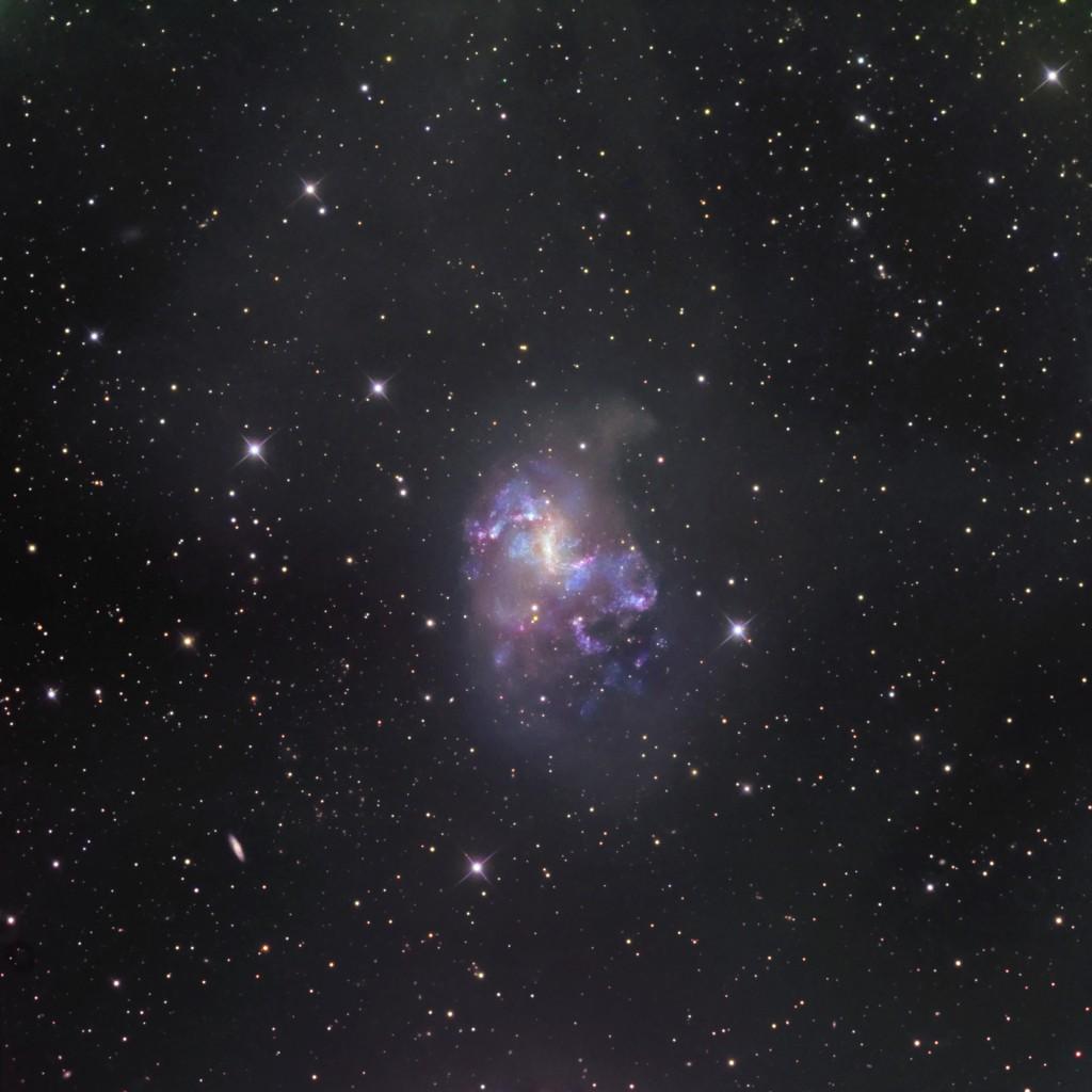 NGC 1313