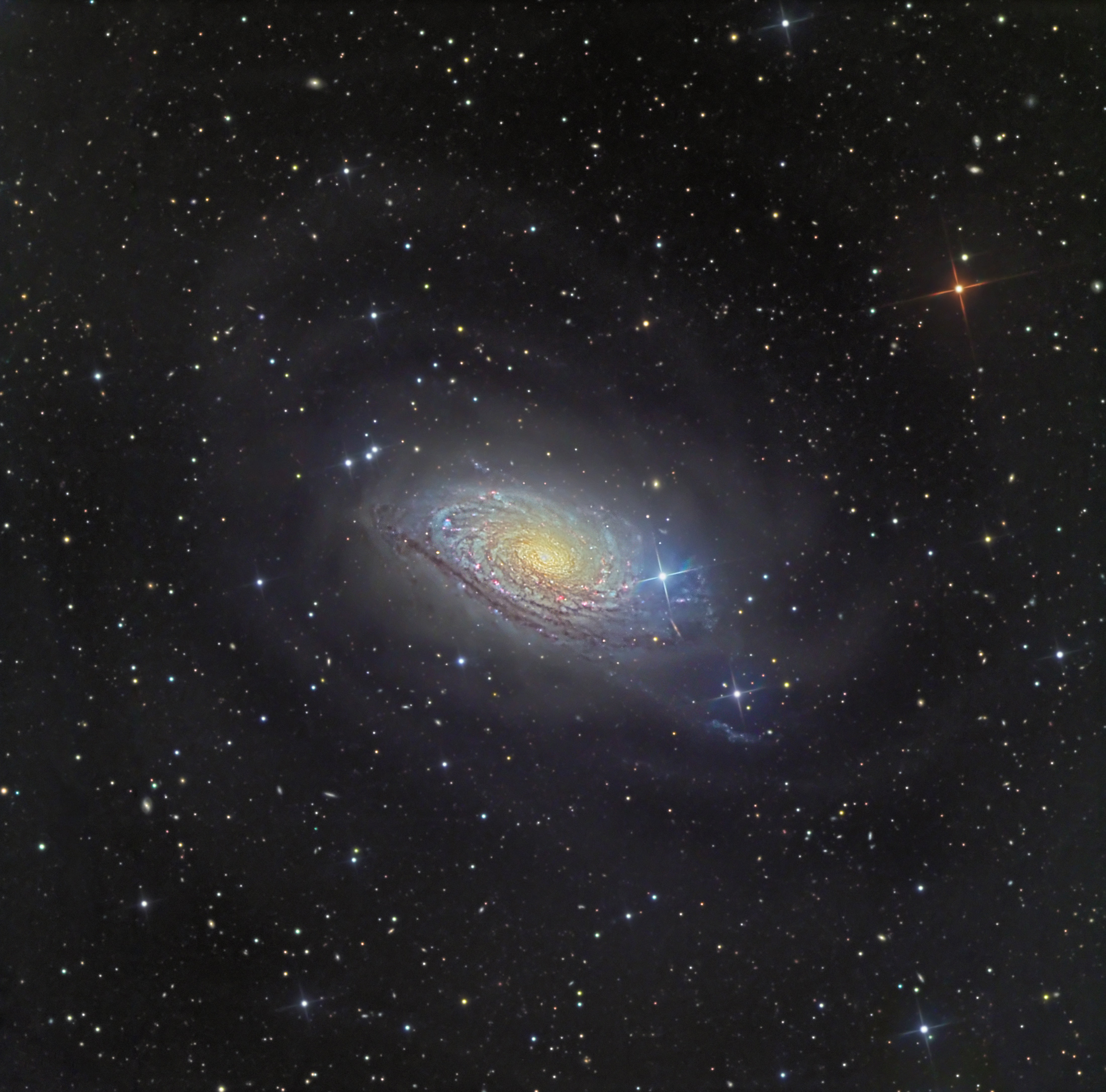 Loops in M63