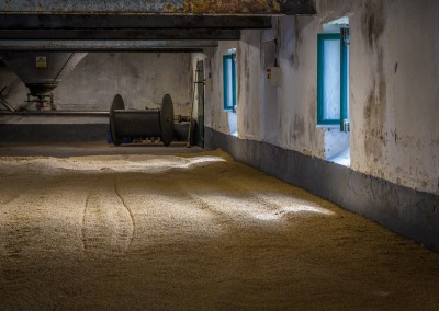 Drying Barley 2 at LaPhroaig, Islay