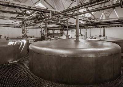 LaPhroaig Fermentation