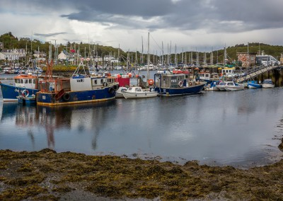 Colourful Tarbert Habour