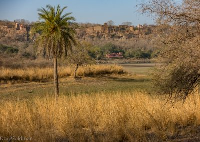 Ranthambore Fort From A Distance
