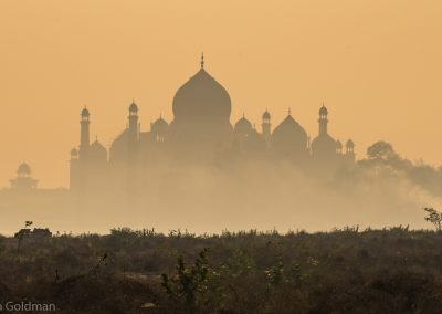 Misty Sunrise from Paradise Park West of Taj Mahal