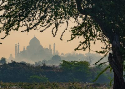 Misty Sunrise from Paradise Park West of Taj Mahal 2