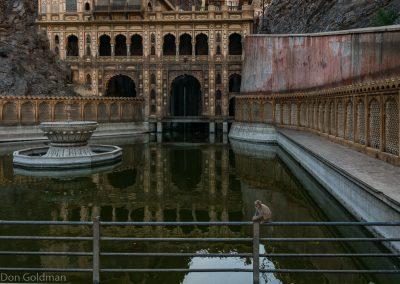 Hanuman's Temple, Jaipur