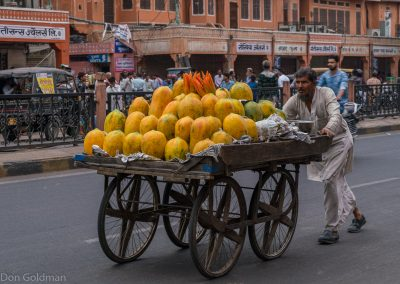 Delivery, Jaipur
