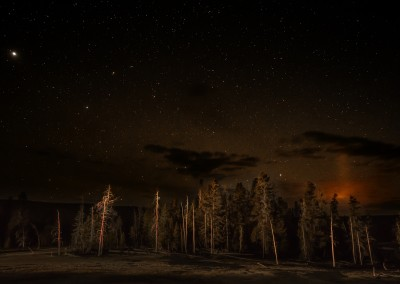 Yellowstone Nights