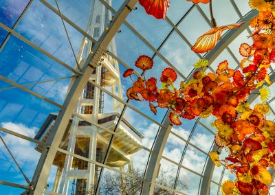 chihuly-11