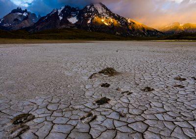 Guanaco Tracks in Mud Flat