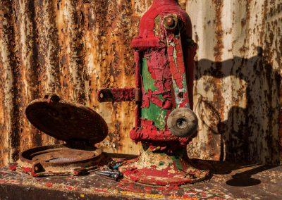 Darwin-Oil Pump