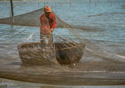 Harvesting Fish