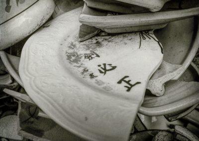 Pottery Chards