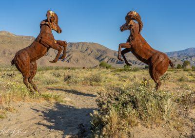 Dueling Rams