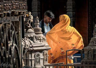 Beautiful Sari