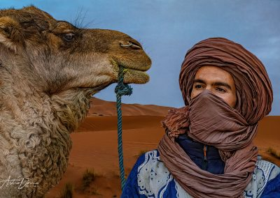 Camel Driver Near Erhoud