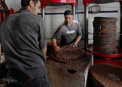 Extracting Olive Oil Moulay Driss