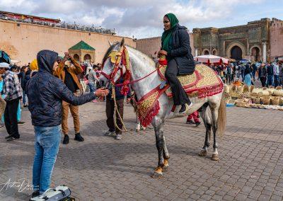Horseback in Lahdim Square Meknez