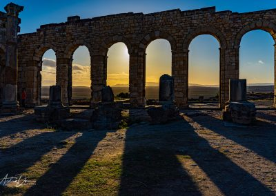 Volubilis Sunset