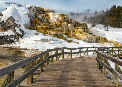 Mammoth Hot Springs in Winter 3