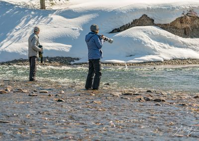 Photographers Ready for River Otters