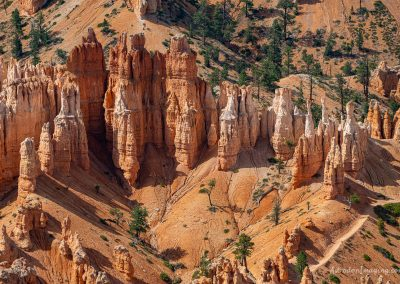 Bryce Point Close-Up